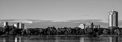 July 4 BW #6 (brev99) Tags: silverefex blackandwhite tamron35f18vc d610 tulsa riverwestpark july4th arkansasriver buildings trees