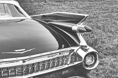 Dragrace #5 (whistlah50) Tags: cadillac eldorado oldtimer beauty tail black white blackandwhite bnw bw outdoor panasonic dmcfz1000 fz1000 car