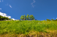 Val di Tures (ccr_358) Tags: ccr358 2016 summer august italy altoadige southtyrol südtirol alps mountainscape italia dolomiti dolomites dolomiten day nikon d5000 nikond5000 valley tures valditures tauferertal campotures sandintaufers green blue flowers sunflowers hiking