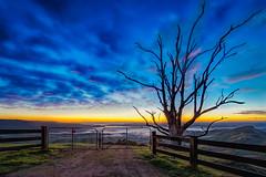 Please shut the gate (Chas56) Tags: gate sunrise morning landscape canon victoria australia tree fog frost hills ranges strathcreek canon5dmkiii fence 1635mm sky clouds dawn colour color