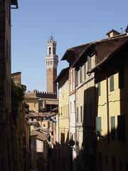 Siena from a distance (FloBue) Tags: siena 2017 toscana toskana tuscany stadt stadtansicht city città cityscape turm tower torre architettura architektur architecture