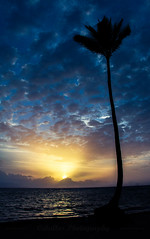 At first light... (koshiri) Tags: beach plage sunrise palm sky sun light water punta cana
