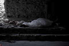 IMG_7607 (m.acqualeni) Tags: manu manuel photo photography belle jolie fille femme robe de mariée blanche sang rouge blood red forêt foreste dark gothique mort dead pleine blonde alternatif alternative décalé sombre blanc dress white zombie walk girl undead