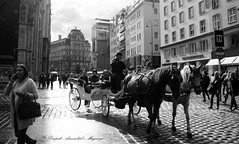 Street in Vienna (magiceye) Tags: horse carriage vienna street shoppers tourists austria europe travel monochrome blackandwhite