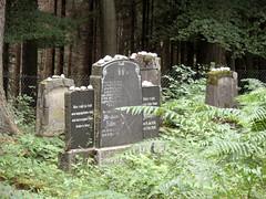 Jüdischer Friedhof Höhr-Grenzhausen (onnola) Tags: grenzhausen höhrgrenzhausen westerwald rheinlandpfalz deutschland rhinelandpalatinate germany friedhof jüdisch jewish cemetery kirkut grab grabstein grave gravestone graveyard mazewa