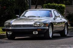 1981 Jaguar XJS... (Saad Sarfraz Sheikh) Tags: vintage classic car auto travel collectors item jaguar mg roaster mercedes mercedesbenz alfaromeo building architecture portfolio lahore pakistan punjab esquire