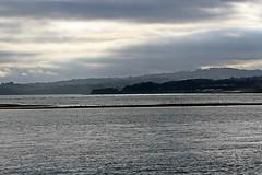 Exe River Cruse, Exmouth, Devon - Feb 2017 (Dis da fi we (was Hickatee)) Tags: river exe cruise exmouth devon
