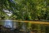 Vrelo Bosne (Todorovic Srecko) Tags: bosna bosnia hercegovina sarajevo vrelo bosne reka pejzaz creek potok izvor priroda nature drvece suma forest canon tamron 28 1750 canon1200d