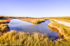 Three Ways (Francesco Impellizzeri) Tags: brighton england panasonic river nature