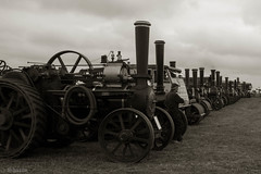 Weeting Steam Rally (Explored) (sharongellyroo) Tags: weetingsteamrally norfolk steamengines inexplore