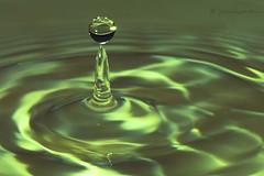 limey green (martinaschneider) Tags: water flash drops waterdroplets ripples splash