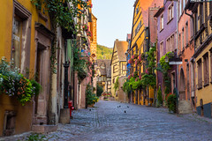French Morning (lukejc1) Tags: riquewihr smalltown colorful color landscape archictecture effects alsace road street france technique village town europe european french landscapephotographer landscapephotography landscapes outdoorphotographer outdoorphotography outdoors