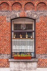 DSC_1347-2 (deborahb0cch1) Tags: brick window house home cosy bruges brugge cosybruges windowsill plants facade curtains