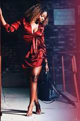 (DJ_ThePhotog) Tags: fashion fashionphotography fashionportrait fashioneditorial dress heels purse bag michaelkors canon canon6d 6d sigma sigmalens california ca pasadena editorial editorialphotography editorialfashion melanin