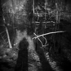 The Morning Walk #41 (LowerDarnley) Tags: holga woods morningwalk morninglight branch trees forest selfshadow vernalpool