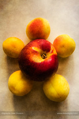 Fruity still life (ILO DESIGNS) Tags: alimentos artística bodegón color manzanas melocotón retro salud food stilllife fruits apples apricots kitchen home indoors naturallight colors yellow red textures d3300 artistic fruity