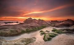 Orange&Green (Sònia CM) Tags: sea seascape sky sunrise orange mar morning morninglight rocks clouds cloudy esfujifilmx fuji fujifilm fujixt1 fujinon 1024 landscape longexposure largaexposicion llargaexposicio