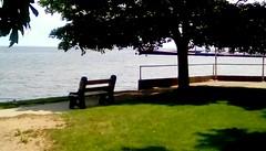 Beautiful summer day at Veteran's Memorial Park - HBM! (Maenette1) Tags: veteransmemorialpark bench trees water grass sidewalk summer menominee uppermichigan happybenchmonday flicker365 52weeksofphotographyweek31