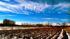 . (Vieparamsberlon.) Tags: landscape winter snowfall autumn trees drama cloud scenery farm mountain