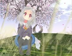 meowza (Yukiterudiary) Tags: elyn tamagosenbei gacha meowzaa neko headband kawaii cute chibi anime sl avatar mesh garden grass