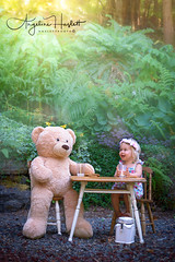 Cookies and Ted (HASLETTPHOTO*) Tags: angeline haslett photography 2017angelinehaslett cookies milk teddy bear child teaparty teddybearpicnic picnic