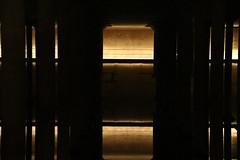 Buffalo Bayou Park Cistern Tour - Buffalo Bayou Park (Houston, Texas - July 20, 2017) (cseeman) Tags: buffalobayou park buffalobayoupark buffalobayoupartnership publicpark river water green nature trails houston texas houstonparks houston2017 cistern watersystem buffalobayouparkcistern houstoncistern waterworks buffalobayouwaterworks reservoir drinkingwater houstonwater undergroundreservoirs houstonhistory publicworks historyofsanitation sanitation publicwater utilities