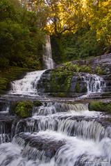 McLean Falls (Velvet.R) Tags: mcleanfalls newzealand nouvellezélande otago southisland iledusud chaslands