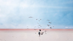 369 - A Silent World (Katrina Yu) Tags: selfportrait 2017 365project manipulation photoshop sea gull beach pastel color conceptual creative concept cinematic mood artsy art artistic negative space fineartphotography