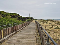 Isla Cristina. Huelva 41 (ferlomu) Tags: andalucia ferlomu huelva islacristina pasarela