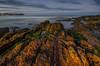 Beauty of Chill (Gerry Ligon) Tags: warriewoodbeach beachsunset