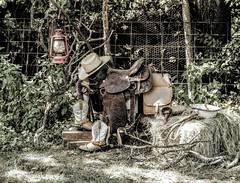 Vintage Cowboy Way of Life (Swifetmom2016) Tags: wood old vintage animal nature war tree danger mammal man combat retro antique dirty soldier people grass rural weapon country saddle lamp lantern hat cowboy western hay haybale boots branches kerosene