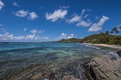 Martinique (Christian-Louis) Tags: landscape island île west indies martinique fwi sea