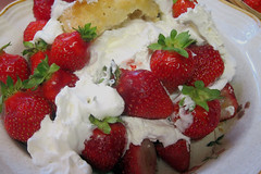 Decadence_Plus (Guyser1) Tags: food strawberries strawberryshortcake westyellowstone canonpowershots95 pointandshoot