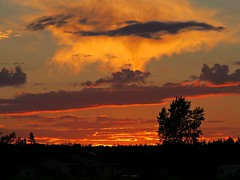 Hot Sunset (clickclique) Tags: sky color colour sunset tree clouds nature outdoors l1gestalt naturescarousel