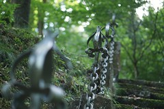 Chains /// Stairs (robinki1) Tags: nature natur stone wall stairs kette metal metall chain bokeh dephtoffield beyondbokeh steine moos gemäuer sony alpha6000 50f18 oss 50mm germany