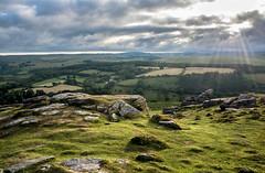 On Yar Tor, Dartmoor - NK2_4196 (Jean Fry) Tags: dartmoor dartmoornationalpark devon englanduk moorland nationalparks uk westcountry yartor tors