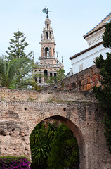 Real Alcazar de Sevilla (Mark Wordy) Tags: seville sevilla spain arches moorish realalcazardesevilla alcazarofseville patiodelamontería lagiralda belltower