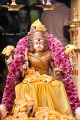 Sri Vaembu Aadhi Muthumaariamman (kosapetimes) Tags: tamil chennai city god amman muthumaariamman tamilnadu flowers garland holy fresh fruits jackfruit canon capture lens photo photography kosapet