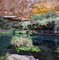 Karijini Dales Gorge Circular Pool
