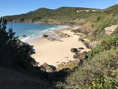 South Burgess Beach to Cape Hawke, Forster, NSW (Black Diamond Images) Tags: burgessbeach forster greatlakesnsw nsw midnorth greatlakes australianbeaches beach beachlandscapes landscape coast iphone appleiphone7plus iphone7plus panorama appleiphone7pluspanorama iphone7pluspanorama iphonepanorama midnorthcoast capehawke