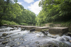 Humford Mill Stepping Stones (aaronlambert1982) Tags: steppingstones river woods humfordwoods humford longexposure outside nature water trees clouds sky foliage nikon nikond7100 leefilters leebigstopper