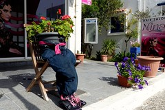Sitting, Waiting for a Trim (Hythe Eye) Tags: mastichari kos hairsalon flowers arrangement