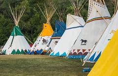 Indian Village (deirdre.lyttle) Tags: calgarystampede indianvillage