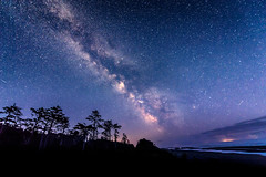 The Milky Way and meteors over Kalaloch Beach, Olympic Peninsula, Washington State (diana_robinson) Tags: milkyway meteors nightphotography nightsky stars kalalochbeach olympicpeninsula washingtonstate