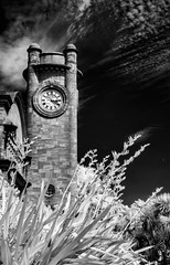 Horniman Museum (Matt OZW) Tags: infrared museum architecture horniman forest hill london