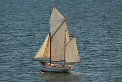 The old sailing-boat (irio.jyske) Tags: sailing sailingboat sea seascape landscape sails ship water summer tallship canonlens