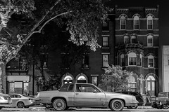 The Filth Car (D. Coleman Photography) Tags: filth dirty old car abandoned south philly philadelphia broad street reed newbold point breeze east passyunk rowhomes buildings cities city scape urban black white night lights