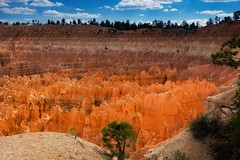 Hot Coals - Bryce Canyon National Park (jodell628) Tags: brycecanyon national park utah fire sun coals hot canyon bryce nature photography light