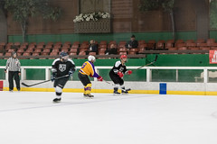 Snoopy 2017 - Game 1 - White Trash V Rusty Kings-49 (www.bazpics.com) Tags: snoopy international ice hockey tournament 2017 santa rosa california mountain view white trash rusty kings 40b division group team sport play player playing adult ca usa america game 1 one arena