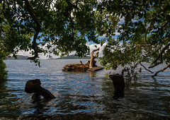 Rusting and abandoned world war 2 american tank left for many years after being dumped in the sea, Shefa Province, Efate island, Vanuatu (Eric Lafforgue) Tags: a0010026 abandoned adventures american army artillery colourimage day efate equipment etonbeach historic history horizontal island melanesia military newhebrides nopeople ocean oceania outdoors pacificislands pacificocean paunangisu photography rusting rusty sea southpacific tanks tourism transportation traveldestinations tree tropical vanuatu vehicles war water weapons wreck ww2 efateisland shefaprovince vut
